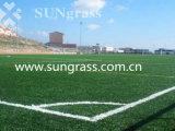 hoge 10mm - Gras van het dichtheids het Kunstmatige Landschap van Sungrass (sunq-HY00141)