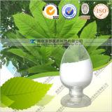 Polifenoli naturali del tè di 30% 50% 95% 98%