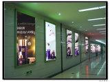 Tarjeta del menú del LED que hace publicidad del rectángulo ligero de la muestra de interior del restaurante de la visualización