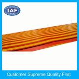 Bath/véhicule/cuisine/étage/couvre-tapis extérieur de PVC évident à l'extérieur le moulage de couvre-tapis