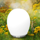 Humectador fresco de la niebla del difusor del aroma (HP-1001-A-5)