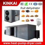 Essiccatore della pompa termica per l'essiccamento della buccia d'arancia/ciliegia/fragola/frutta