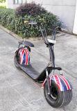 電気1000W Harleyのスクーター