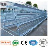 Cage industrielle de ferme de poulet pour des oeufs de volaille