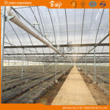 Planting Vegetables와 Fruits를 위한 아치 다중 Span Film Greenhouse