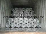 Rete metallica saldata galvanizzata tuffata calda con l'alta qualità