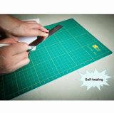 Zelf het Helen van Zerro Scherpe Mat 24 X 18 Duim met Netten en Hoeken voor Ambachten die Hobbys (A2) naaien