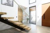 현대 나무로 되는 층계 유리제 방책 나무 단계 계단