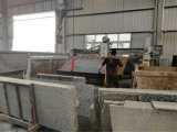 De automatische Machines van de Steen om Graniet/Marmeren Tegels Te snijden