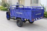 Triciclo de carga agrícola com caixa longa