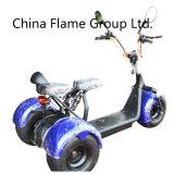 3つの車輪が付いている1000W電気自転車