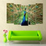 Das Segeltuch, das die 5 Stück-Kunst-Farbanstrich des Pfaus für Wohnzimmer-Segeltuch anstreicht, druckt Gestaltungsarbeits-Wand-Dekor