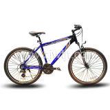 Vélo de montagne/bicyclette (WTB122601)