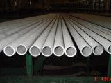 De koudgetrokken Naadloze Pijp/de Buis van het Roestvrij staal (TP310S)