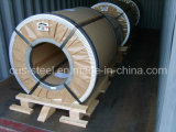Хорошее качество HDG для листа толя/горячей катушки Dipgalvanized стальной