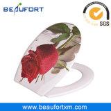 변기 목욕탕 가구를 인쇄하는 로즈 낭만주의 다채로운 꽃