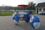 Neues konzipiertes populäres Wasser-Fahrrad für Erwachsene