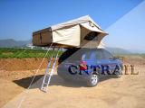 سقف خيمة علويّة ([كرت8003])