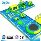 ココヤシ水デザイン在庫(LG8088)の膨脹可能な水生階段スライド