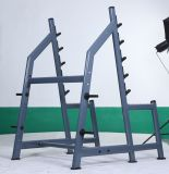 Ateral Rowing \ Fitness Equipment 또는 Square Rack