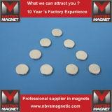 Forte magnete anticorrosivo N35 N42 del neodimio del disco di varia figura