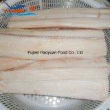 最近フリーズされたシーフードのヨシキリザメの肉付け