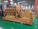Centrale elettrica del generatore del biogas 0.1MW-2MW