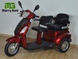 Tricycle 500W électrique pour deux personnes avec le panier arrière