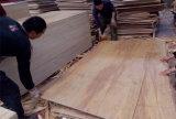 madera contrachapada natural del abedul de 9m m para el embalaje