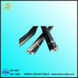 kabel van de Macht ABC van de Leider 0.6/1kv ACSR de XLPE Geïsoleerdee