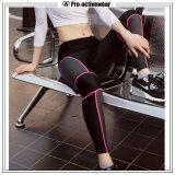 Das mulheres de nylon do Spandex da chegada nova calças apertadas da ioga