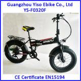 [36ف] تصميم جديد 20 بوصة ثلج درّاجة كهربائيّة سمين