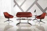 Conjunto suave del sofá del ocio del diseñador de la tela