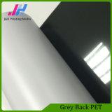 Pellicola stampabile dell'animale domestico della parte posteriore di Grey del materiale pubblicitario della casella chiara