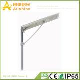 30W alle in einem integrierten LED-Sonnenenergie-Straßenlaternemit Fabrik-Preis