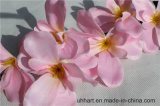 나방 난초 꽃 실크 Aritificial 단 하나 꽃 창조적인 가정 훈장