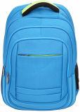 Schule-Beutel-Laptop-Beutel-Rucksack-Beutel-Geschäfts-Fall-Arbeitsweg Yf-Pb2701