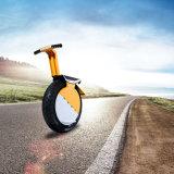Lega di alluminio del motorino di Monowheel che equilibra motociclo elettrico