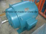 Motor asíncrono trifásico Js136-8-180kw de la trituradora del motor de la CA de la baja tensión de la serie de Js