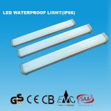 lumière imperméable à l'eau de 2FT IP66 DEL avec du ce de GS (15W)
