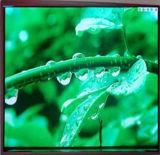 Visualización de pantalla a todo color al aire libre del módulo de P5 320mm*160m m