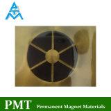 N40m magnetiseerde de Permanente Magneet van de Ring met As 6 Polen