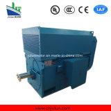 motore a corrente alternata Trifase ad alta tensione di raffreddamento Air-Air di serie di 6kv/10kv Ykk Ykk6302-10-710kw