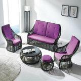 Sofà esterno del rattan della mobilia del nuovo di disegno prodotto caldo di vendita con il prezzo competitivo