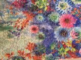 Muti 색깔 여름 복장을%s Tulle에 의하여 인쇄되는 레이스 직물