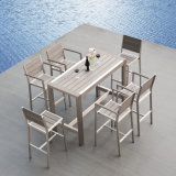 [إيوروبن] أسلوب حديقة مطعم مقهى [ويردروينغ] ألومنيوم بلاستيكيّة خشبيّة كرسي تثبيت طاولة مجموعة