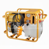 Benzin-Motor-doppelte verantwortliche Hydraulikpumpe