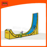 Campo de jogos interno do campo de jogos das crianças da corrediça do campo de jogos de Mich