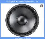 altoparlante professionale di PA dell'audio di buona prestazione di pollice 12nw76-12