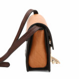 Sacchetto 2016 di Crossbody di colore di contrasto di serie del Brown dell'annata di Aitbags (MBNO040133)